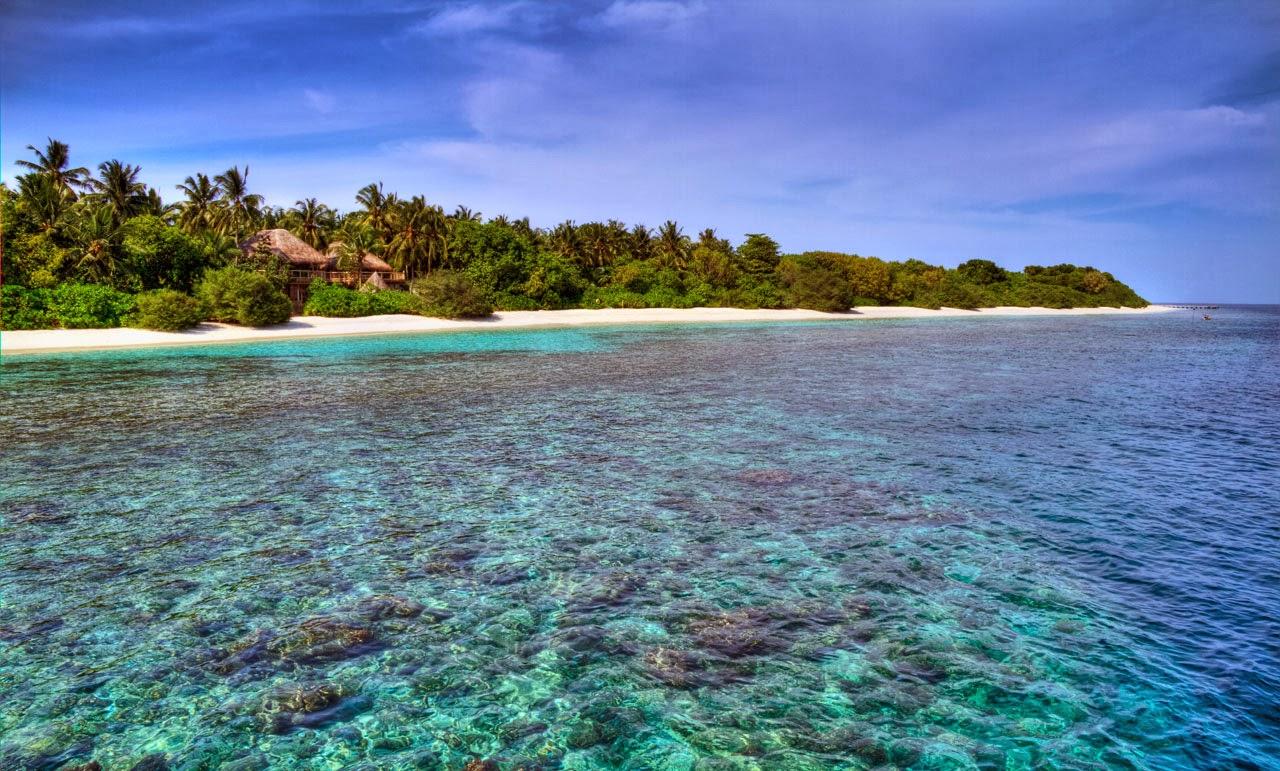 Tropical Dreams: Tropical Dreams - Most Beautiful Resorts ...