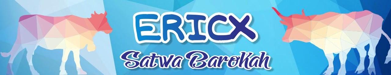ERICX SATWA BAROKAH