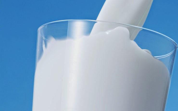 Cachorro pode beber leite?