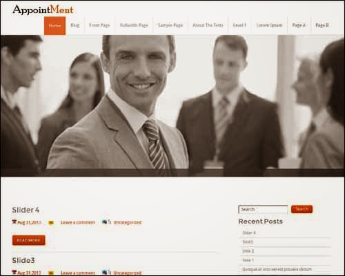 Appointment Free WordPress Theme