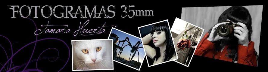 FOTOGRAMAS 35 mm