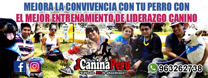 SERVICIOS CANINOS