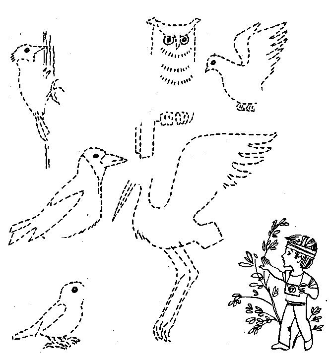Ребенок называет: У птицы не
