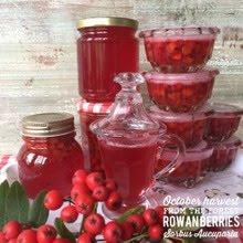 Recept med rönnbär