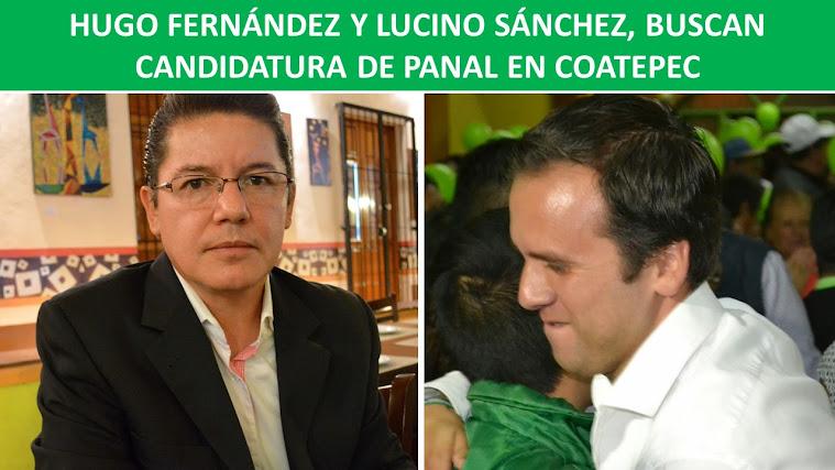 HUGO FERNÁNDEZ Y LUCINO SÁNCHEZ BUSCAN CANDIDATURA DE PANAL EN COATEPEC