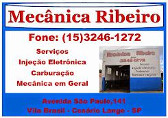 MECÂNICA E AUTO PEÇAS RIBEIRO