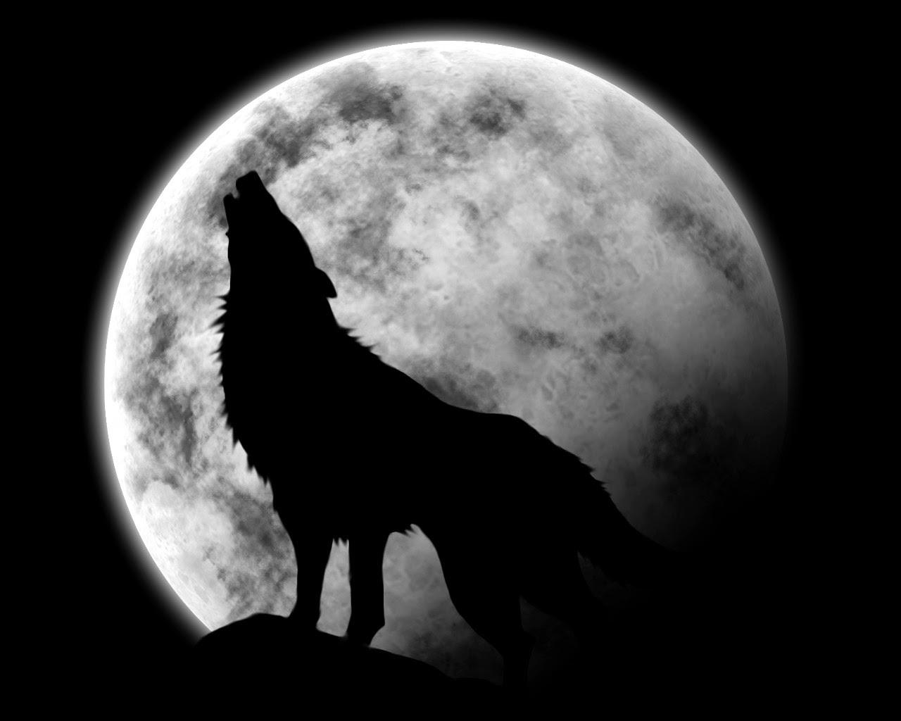 chantes avec les loups - YouTube