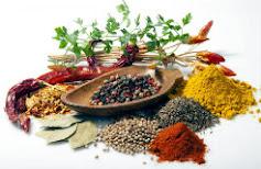 Začini i začinsko bilje u kulinarstvu