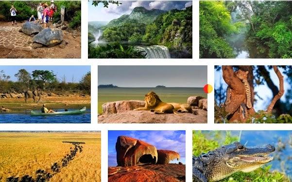 Los 10 mejores Parques y más famosos para realizar Safari en el Mundo