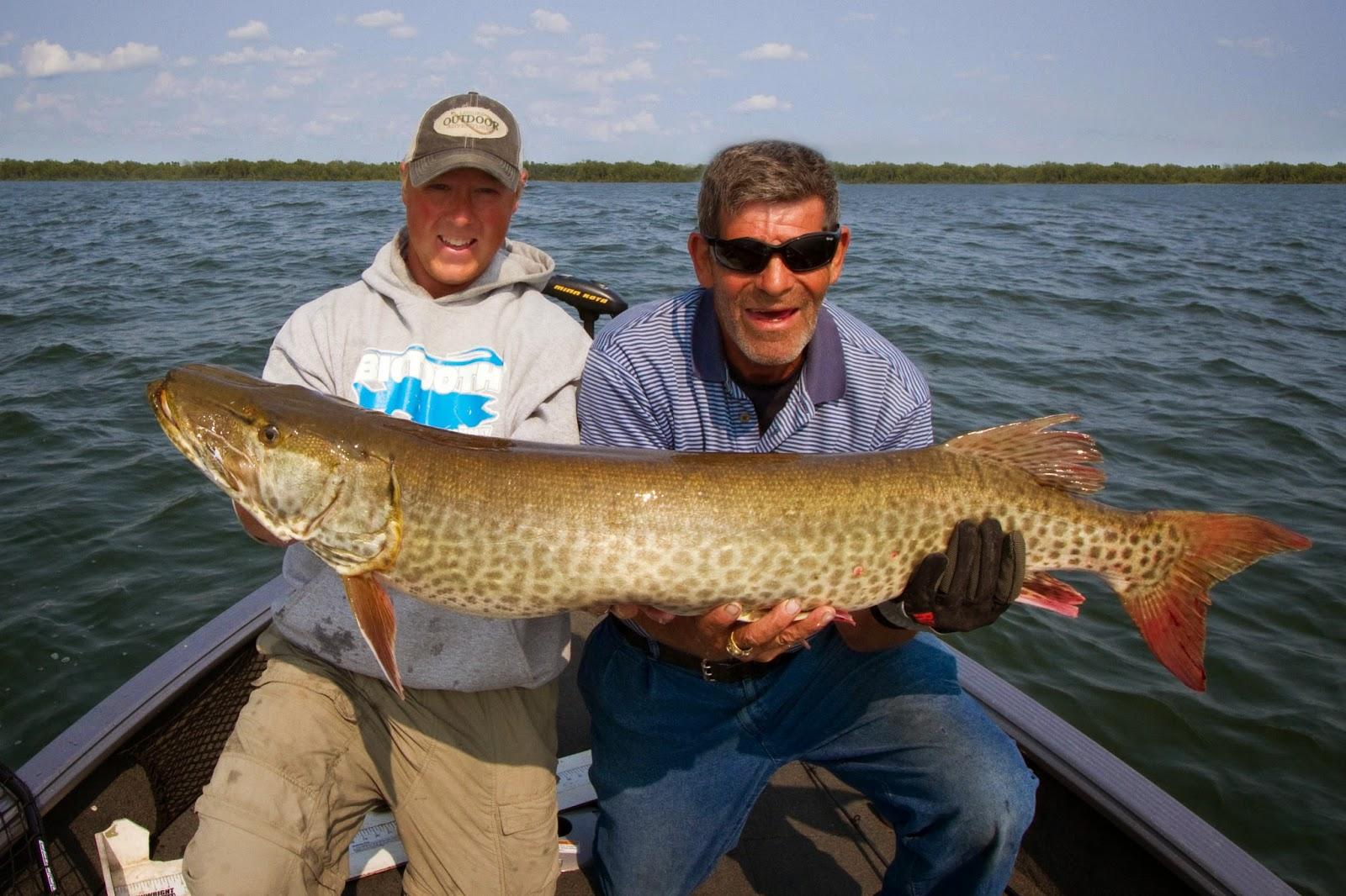 muskie fishing lakes in minnesota