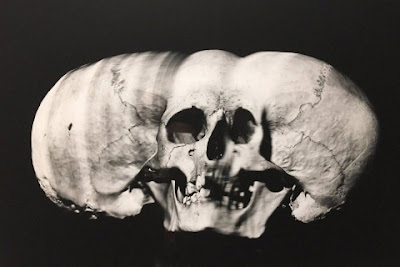 Irving Penn's Skulls | Late 1970s, Image courtesy http://www.highsnobiety.com/2017/01/05/irving-penn-photographer/