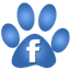 Paws-on-the-Pavement-Facebook-Icon