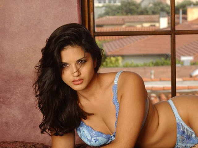 Sexy Photos and   Wallpapers of Sunny leone