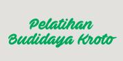 Budidaya Kroto