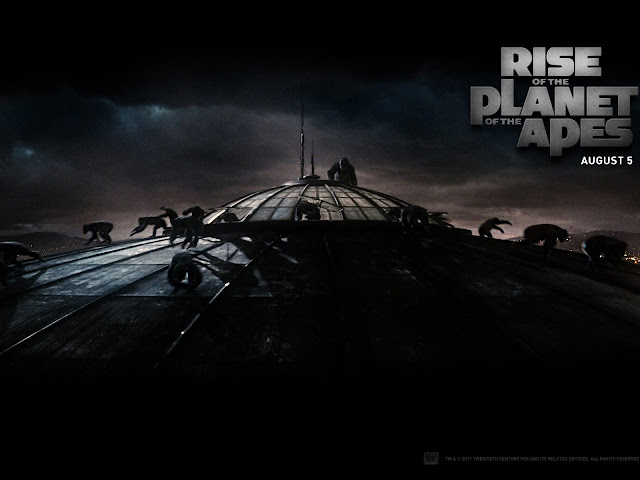 Rise of the Planet of the Apes Wallpaper 4