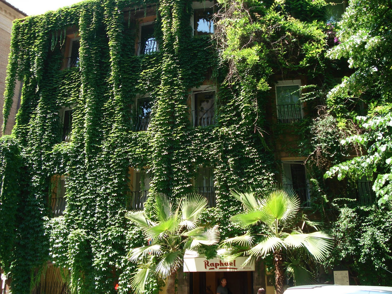 Jardin vertical del hotel rapha l de roma jardines for Techos y paredes verdes