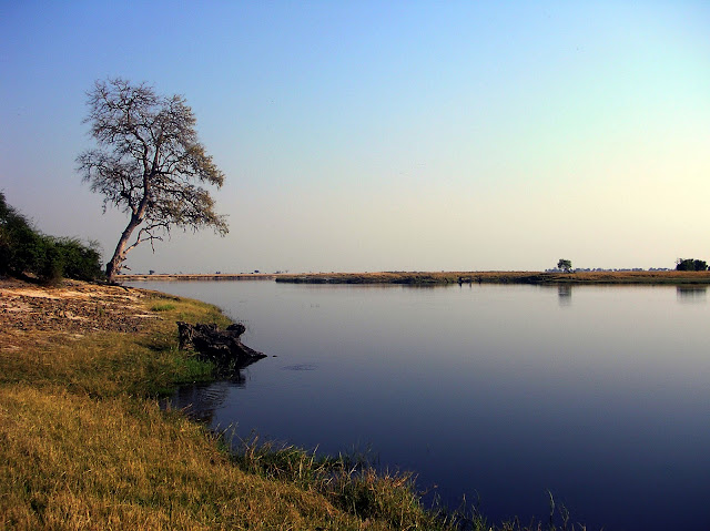 BOTSWANA: Safari en Chobe National Park