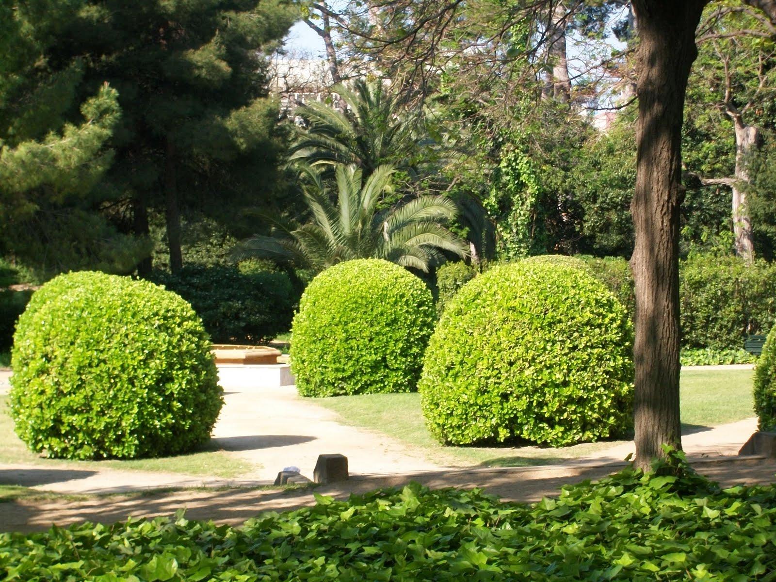 Enric llorens matinal als jardins del palau de pedralbes for Jardines del palau