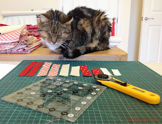 Sparky the Cat helping with fabric choices