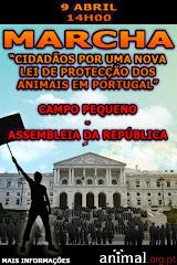 SE GOSTA DE ANIMAIS,VAI PARTICIPAR!