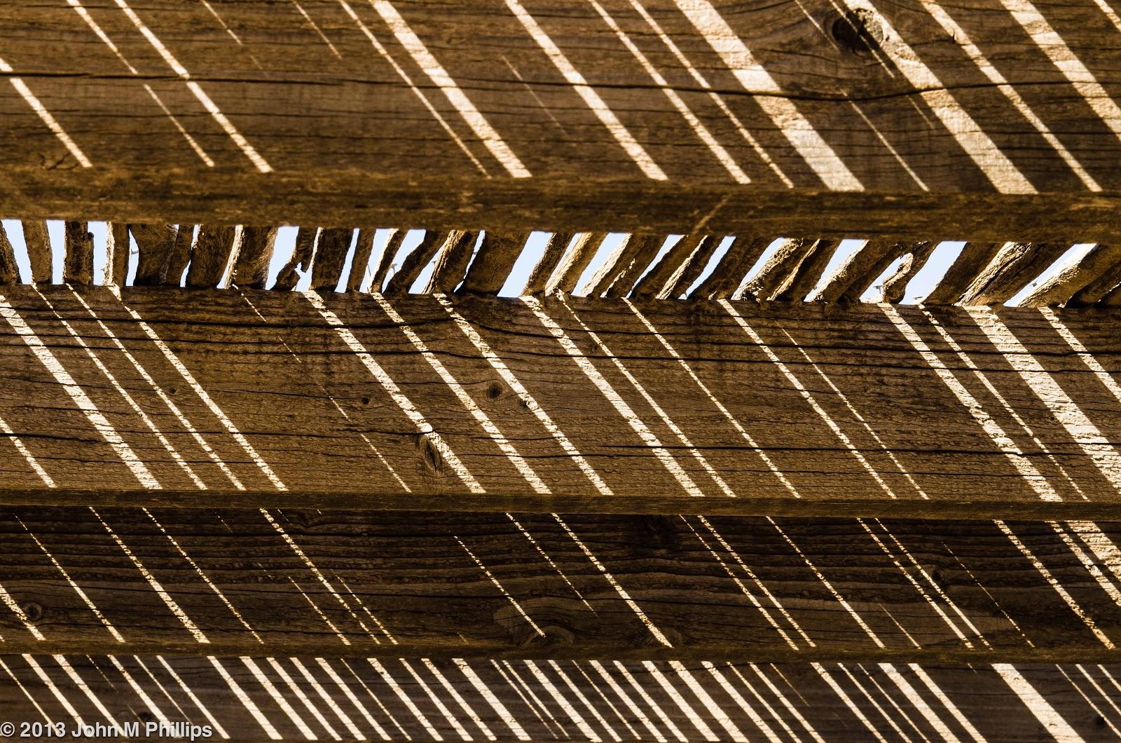SKEPTIC PHOTO: DESERT BOTANICAL GARDEN I