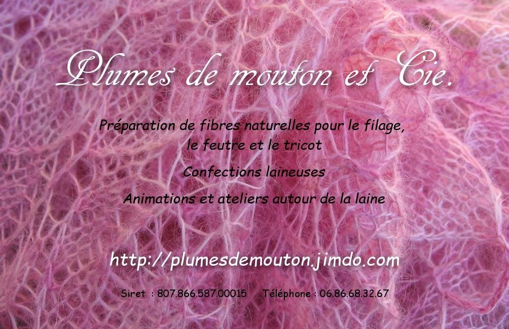 http://plumesdemouton.jimdo.com/