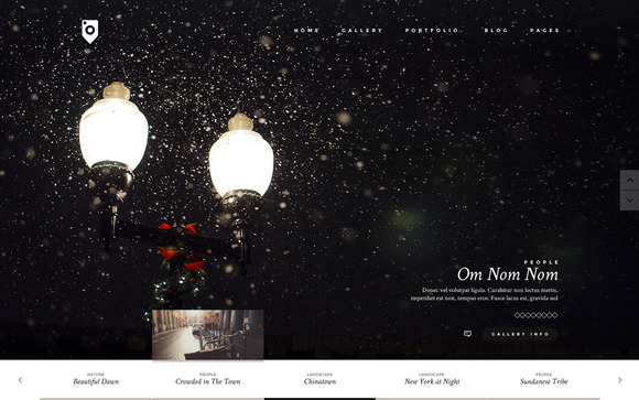 photo and personal wordpress theme