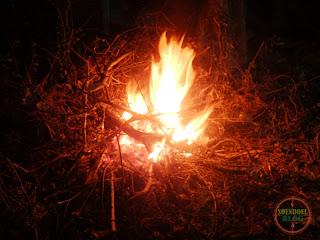 Foto Api Unggun