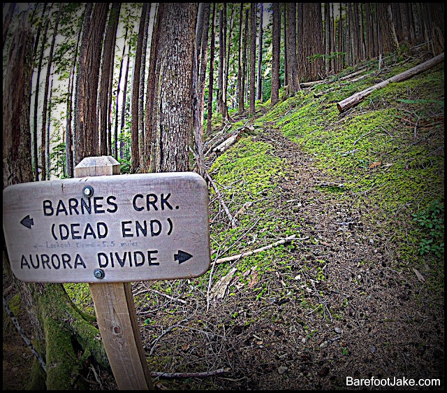 aurora divide trail