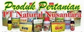 http://www.stockistnasajogja.com/2012/10/daftar-produk-pertanian-pt-nasa.html