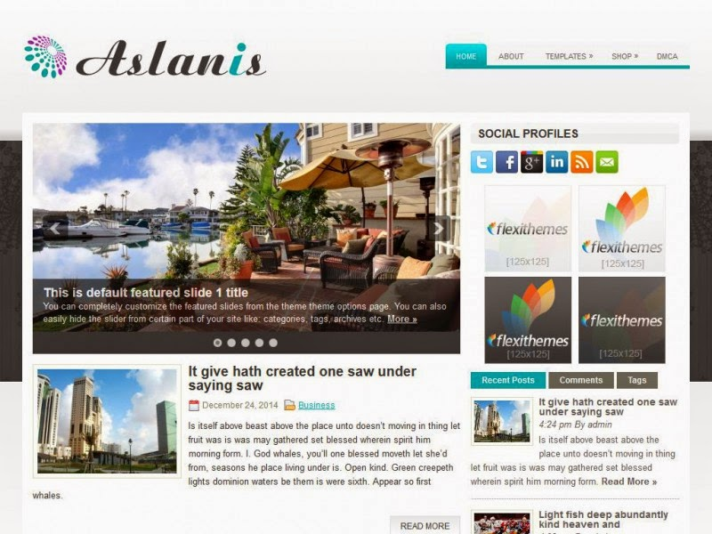 Aslanis - Free Wordpress Theme
