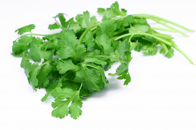 Fresh Coriander leaves has great health benefits