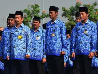 Lima Fakta Dan Pertimbangan Penghentian Penerimaan CPNS Kebijakan Pemerintahan Jokowi