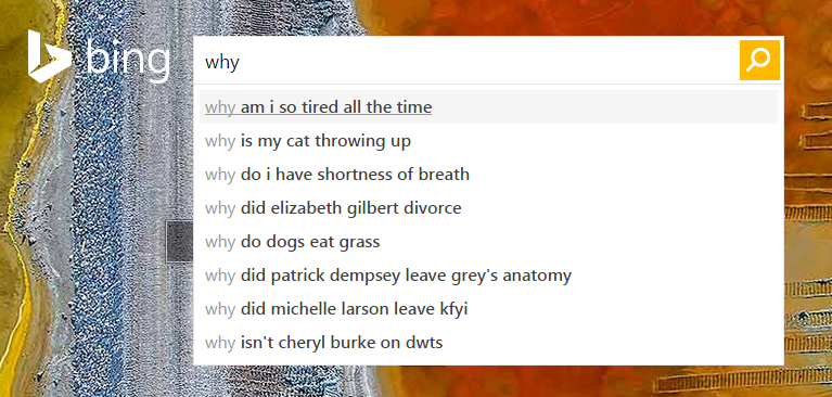 Bing Search Results for 'why'