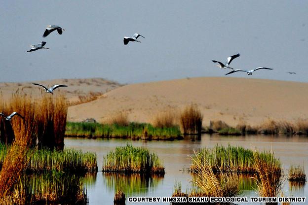 Ningxia Sand Lake