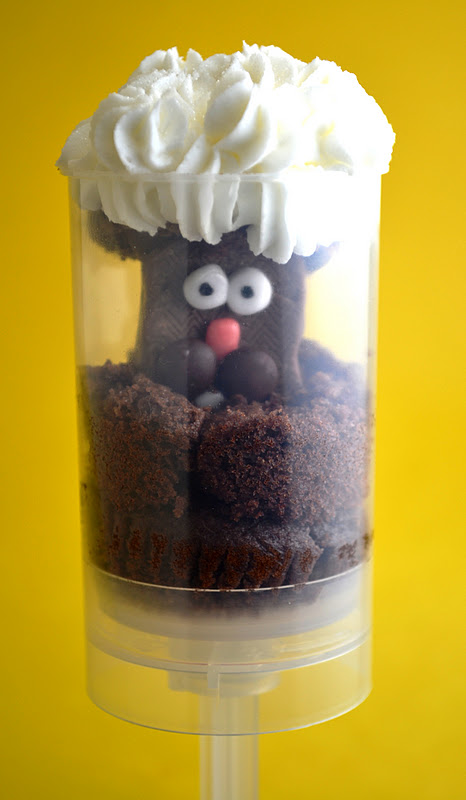 Groundhog Day Cake Pops