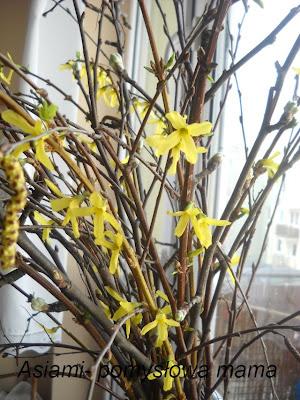 Wiosna się do nas wprowadza .....