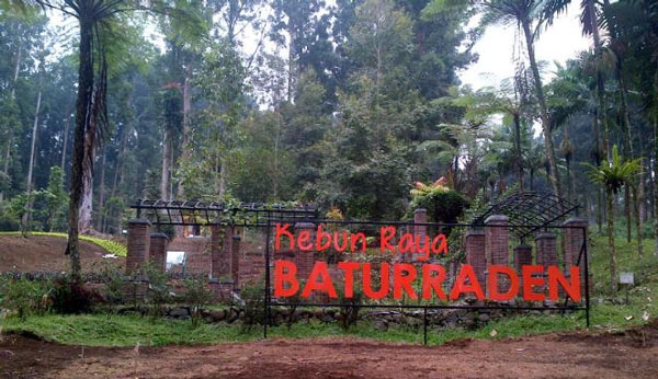 3 Spot Favorit Wisatawan di Baturaden