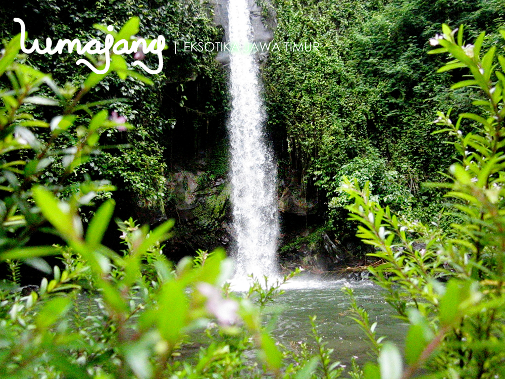 Download this Air Terjun Suci picture