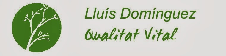 Lluís Domínguez