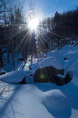 Bear Lake Road, Rocky Mountain National Park
