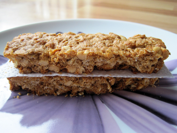 Daily Dose of Fit: Crunchy Peanut Butter Granola Bars