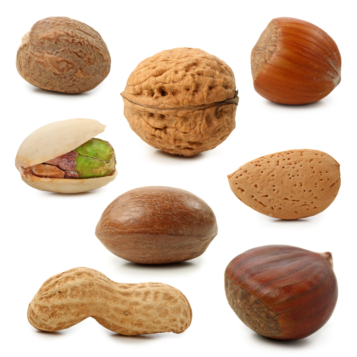 QQ Wallpapers: Nuts - ClipArt Images