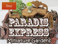Paradis Express on 18th Jan 2012