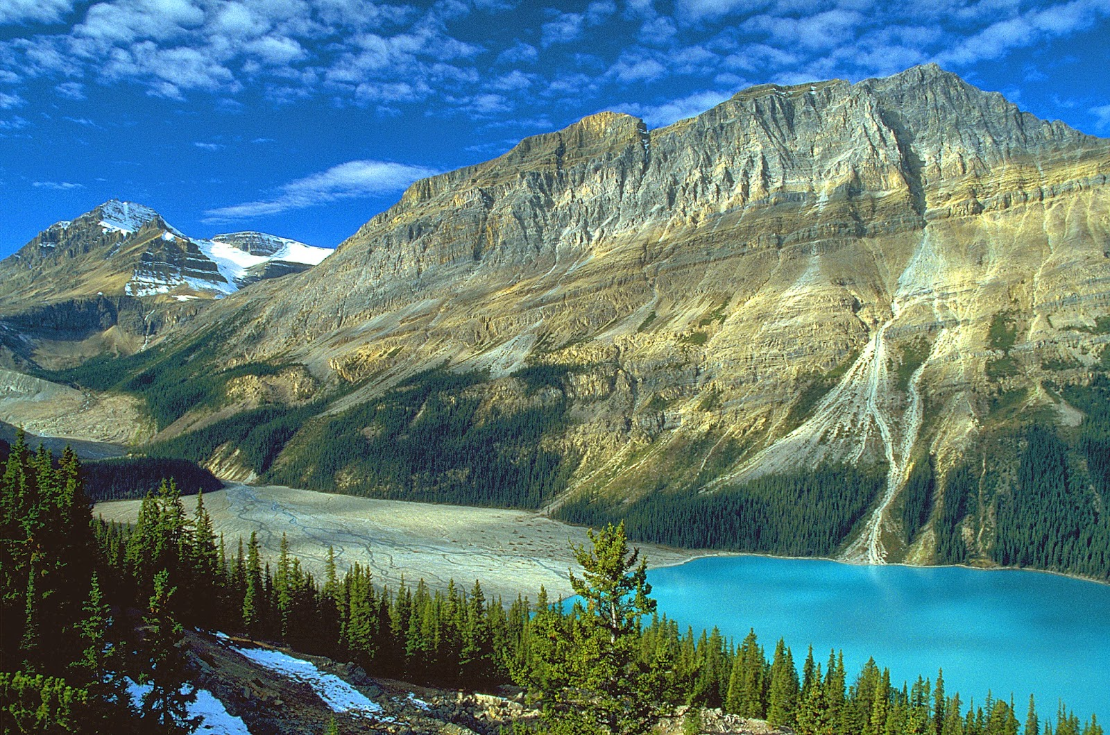 Peyto lake top 10 most beautiful lakes wallpaper in the world