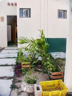 jardin pequeño fachada - antes2