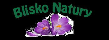 http://www.bliskonatury.pl/pl/p/Maslo-kawowe%2C-50-g/542