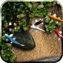 Koi Live Wallpaper apk - Colorful koi fish background