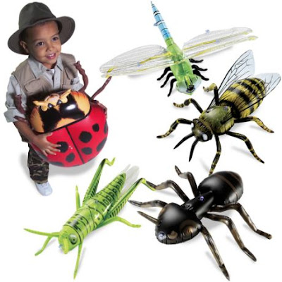 Insects Pictures With Names For Kids Insects Pictures For Kids 2
