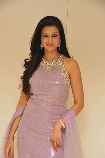 Hasha Nandini pos at cmr aashadam event 016.jpg